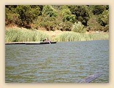 lake, lake chabot, romantic, love, boat, water