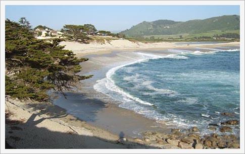 ブログ, エッセイ, シングルマザー, 海外生活, 人気のブログ, 注目のブログ, 話題のエッセイ, カリフォルニア生活, アメリカ生活, ノンフィクション, 現代画家, 人気, アーティスト, サンフランシスコ, フェースブック話題の人, 話題の人, 海外の日本人アーティスト, カーメル, ビーチ, 砂浜,  観光, 海岸,  美しい風景
